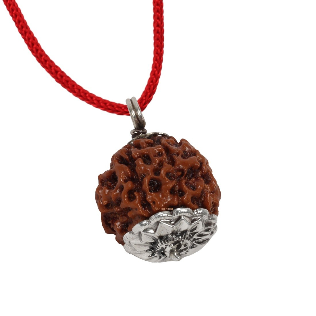 Astrodidi 8 Mukhi Rudraksha (Eight Face Rudraksha) Silver Pendant With Lab Certificate - Big Size Indonesian Rudraksha